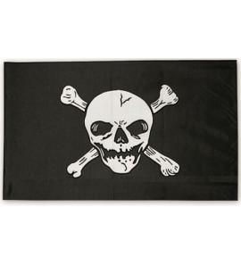 Pirates black flag with skull