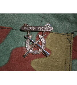 Rifle Expert Badge